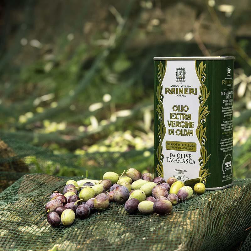 Olio extra vergine di oliva da oliva taggiasca Raineri
